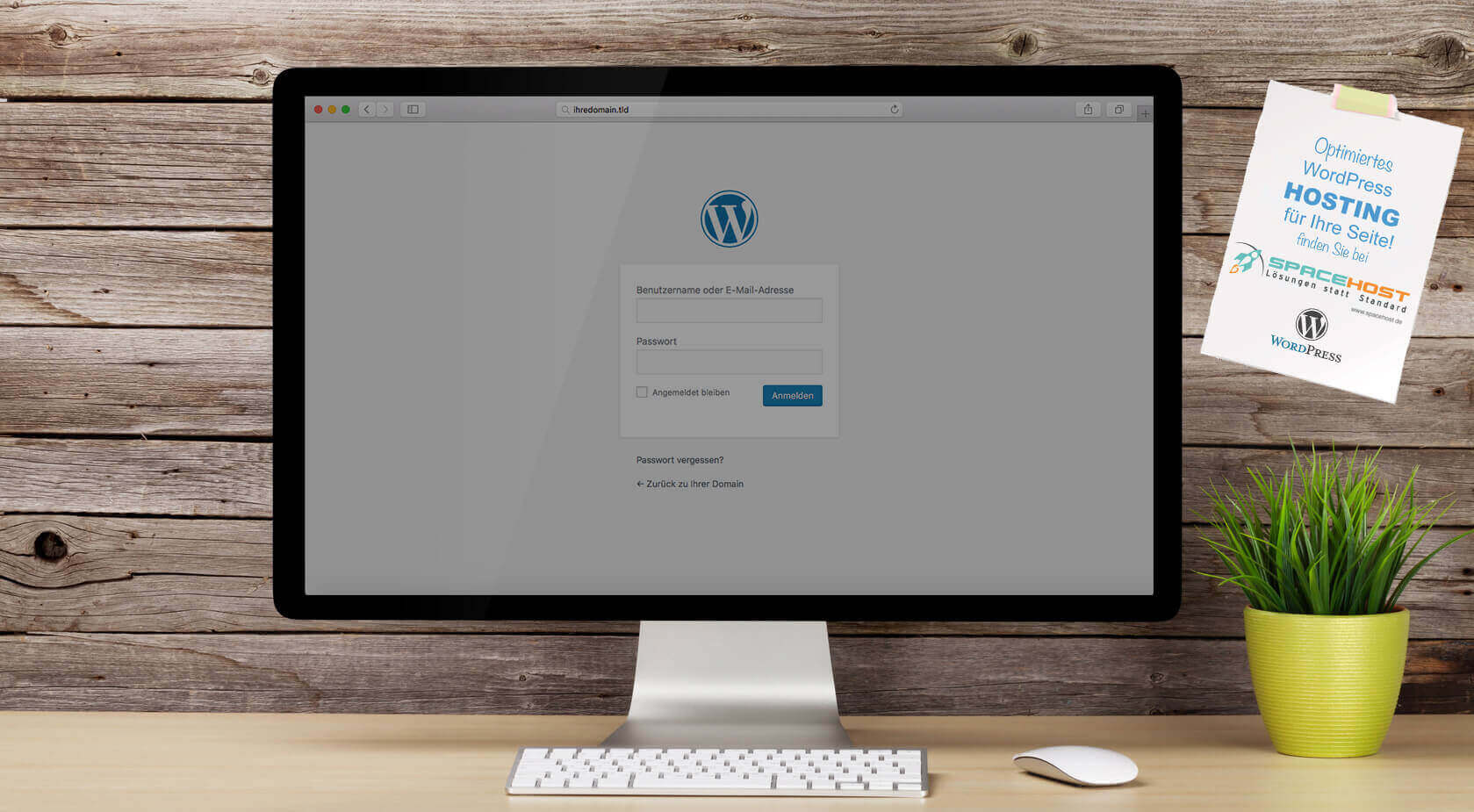 wordpress-hosting-main